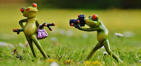 Usługi foto - sesje fotograficzne